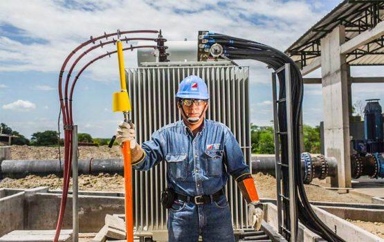 Auditoria ambiental para las empresas eléctricas de Megaluz.ELECTRONOROESTE S.A.